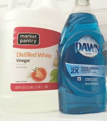 Make a Solution of Vinegar and Dish Soap