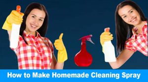 How To Make Homemade Cleaning Spray