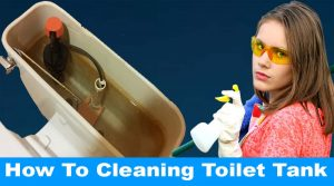 How To Cleaning Toilet Tank