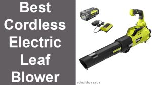 Best Cordless Electric Leaf Blower
